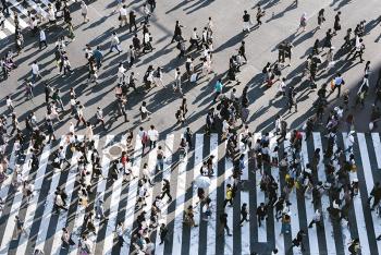 Photo of Shibuya Crossing, Japan by Ryoji Iwata on Unsplash