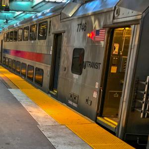 "<a href=""https://commons.wikimedia.org/wiki/File:NJ_Transit_train_at_Newark_Penn_Station.jpg"">Bonnachoven</a>, CC0, via Wikimedia Commons"
