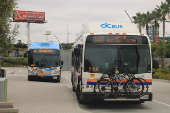Two buses parked at a transit plaza, with the OCBus logo, one is going to Irvine, the other MacArthur Boulevard, palm trees in the background